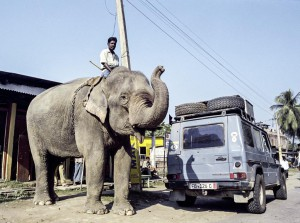 Auslaufmodell: Motor und Elefantenantrieb sollen in Indien bis 2030 durch elektrische Antriebe ersetzt werden (Bild: Daimler AG)