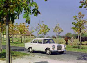 "Mercedes-Benz ""Heckflosse"", W 110, 1961 bis 1968 (Bild: Daimler AG)"